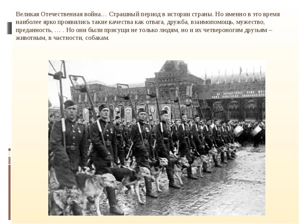 Великая Отечественная война… Страшный период в истории страны. Но именно в э...