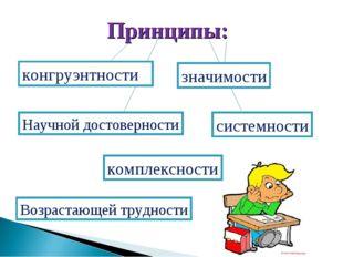 Принципы: конгруэнтности значимости системности Научной достоверности комплек