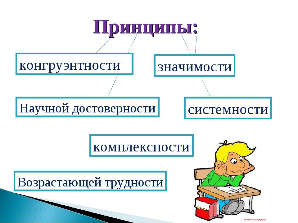 Принципы: конгруэнтности значимости системности Научной достоверности комплек...