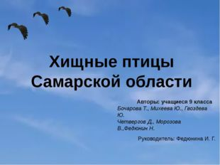 Хищные птицы Самарской области Авторы: учащиеся 9 класса Бочарова Т., Михеева