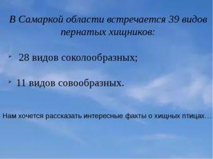 В Самаркой области встречается 39 видов пернатых хищников: 28 видов соколообр