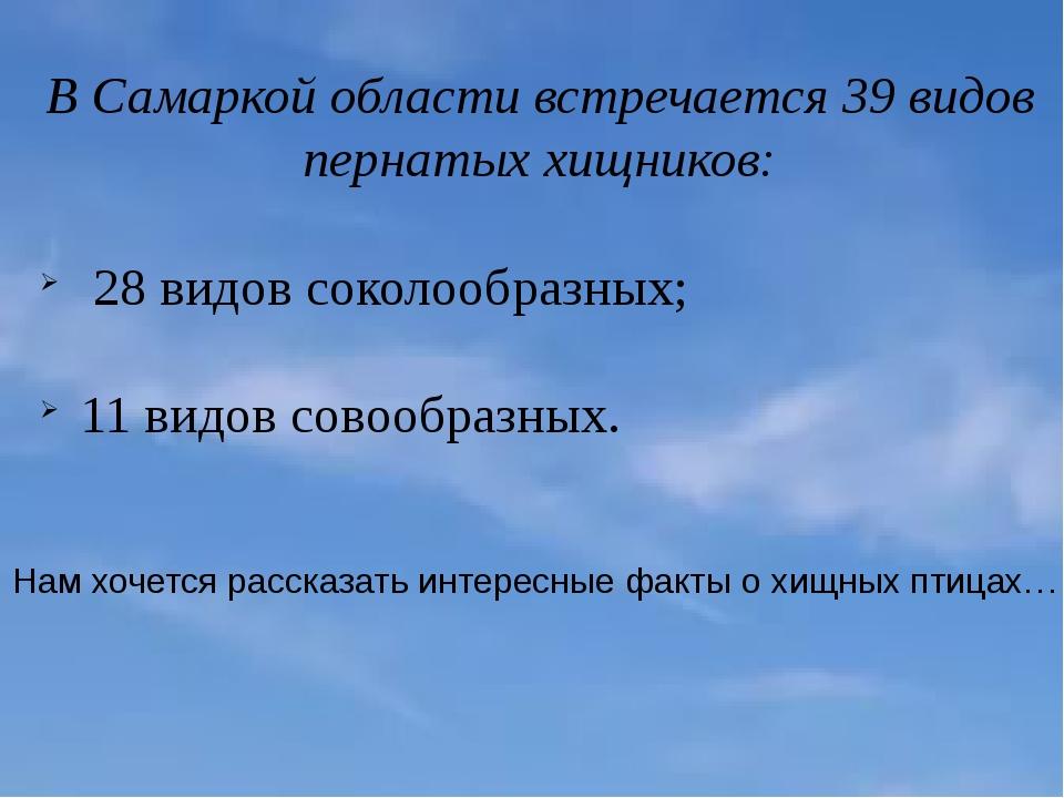 В Самаркой области встречается 39 видов пернатых хищников: 28 видов соколообр...
