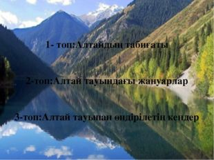 1- топ:Алтайдың табиғаты 2-топ:Алтай тауындағы жануарлар 3-топ:Алтай тауынан