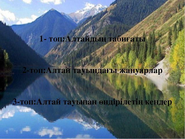 1- топ:Алтайдың табиғаты 2-топ:Алтай тауындағы жануарлар 3-топ:Алтай тауынан...