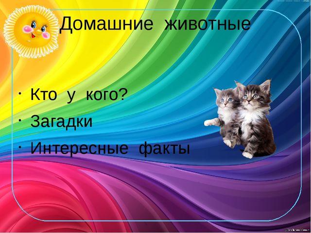 Домашние животные Кто у кого? Загадки Интересные факты