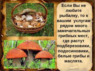 Если Вы не любите рыбалку, то к вашим услугам рядом много замечательных грибн
