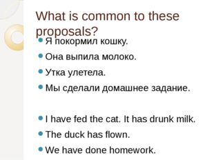What is common to these proposals? Я покормил кошку. Она выпила молоко. Утка
