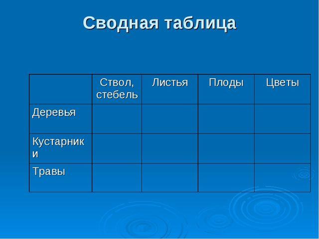 Сводная таблица Ствол, стебельЛистьяПлодыЦветы Деревья Кустарники...