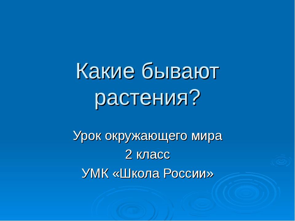Какие бывают растения? Урок окружающего мира 2 класс УМК «Школа России»