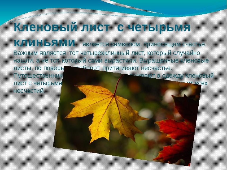 Кленовый лист с четырьмя клиньями является символом, приносящим счастье. Важн...