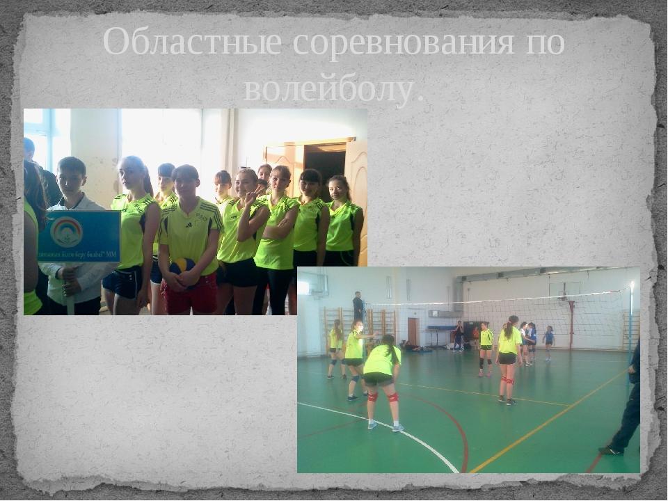 Областные соревнования по волейболу.