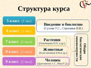 Структура курса 5 класс (1 час) 6 класс (1 час) 7 класс (2 часа) 8 класс (2 ч