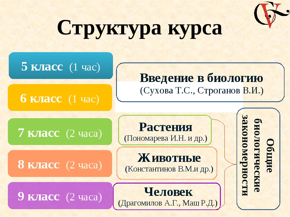 Структура курса 5 класс (1 час) 6 класс (1 час) 7 класс (2 часа) 8 класс (2 ч...