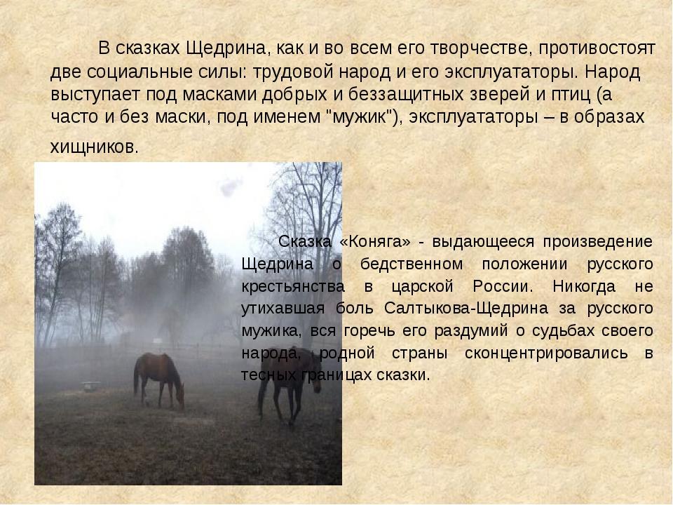 В сказках Щедрина, как и во всем его творчестве, противостоят две социальные...