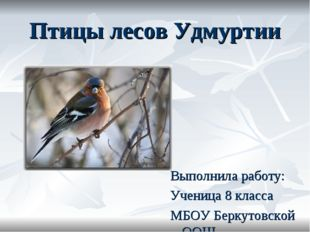 Птицы лесов Удмуртии Выполнила работу: Ученица 8 класса МБОУ Беркутовской ООШ