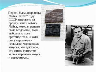 Первой была дворняжка Лайка. В 1957 году СССР запустило на орбиту Земли соба
