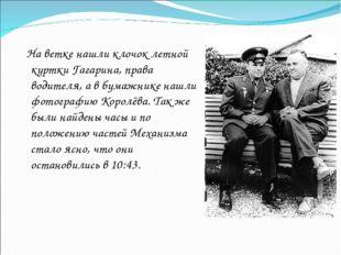 На ветке нашли клочок летной куртки Гагарина, права водителя, а в бумажнике