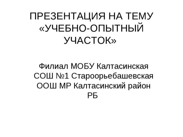 ПРЕЗЕНТАЦИЯ НА ТЕМУ «УЧЕБНО-ОПЫТНЫЙ УЧАСТОК» Филиал МОБУ Калтасинская СОШ №1...