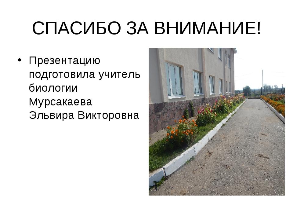 СПАСИБО ЗА ВНИМАНИЕ! Презентацию подготовила учитель биологии Мурсакаева Эльв...