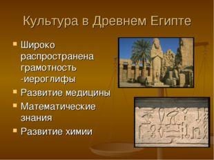 Культура в Древнем Египте Широко распространена грамотность -иероглифы Развит