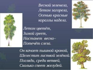 Весной зеленела, Летом загорела,  Осенью красные кораллы