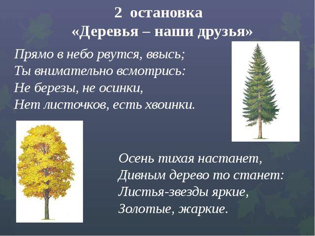 2 остановка «Деревья – наши друзья» Прямо в небо рвутся, ввысь; ...