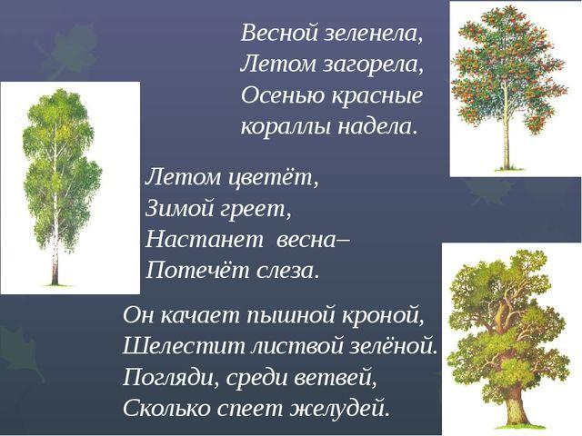 Весной зеленела, Летом загорела,  Осенью красные кораллы...