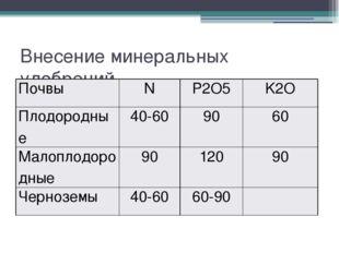 Внесение минеральных удобрений Почвы N P2O5 K2O Плодородные 40-60 90 60 Малоп