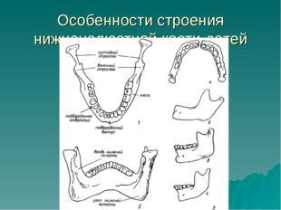 Особенности строения нижнечелюстной кости детей