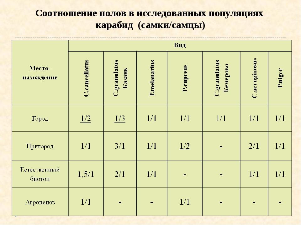 Соотношение полов в исследованных популяциях карабид (самки/самцы)