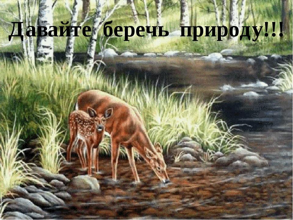 Давайте беречь природу!!!