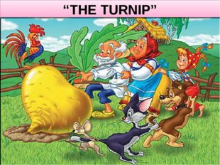 """THE TURNIP"""