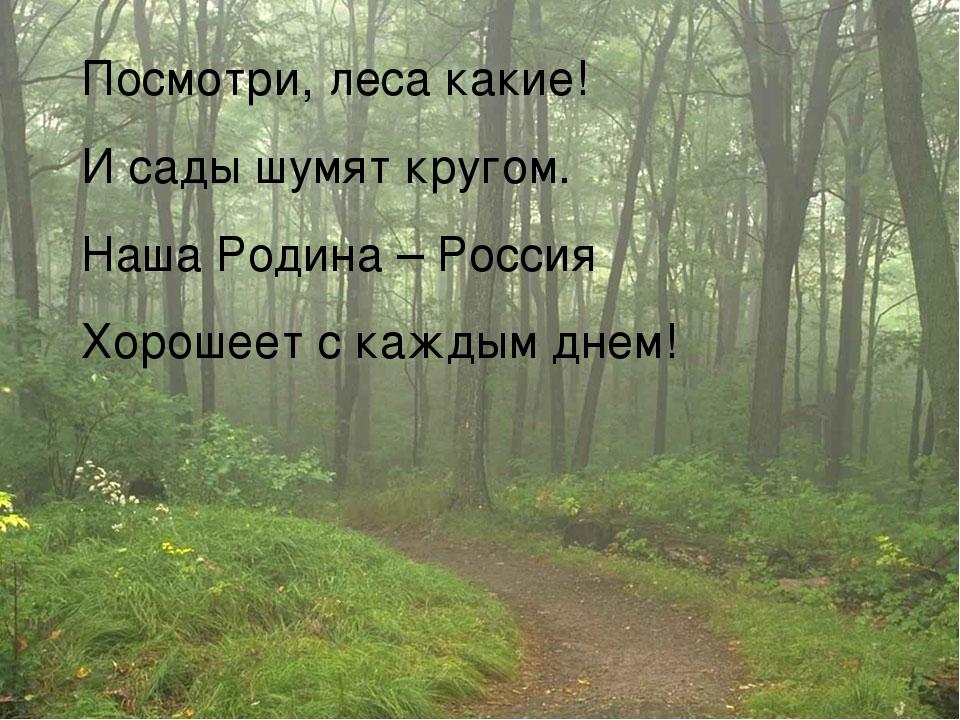 Посмотри, леса какие! И сады шумят кругом. Наша Родина – Россия Хорошеет с ка...