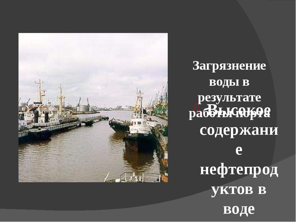 Загрязнение воды в результате работы порта Высокое содержание нефтепродуктов...