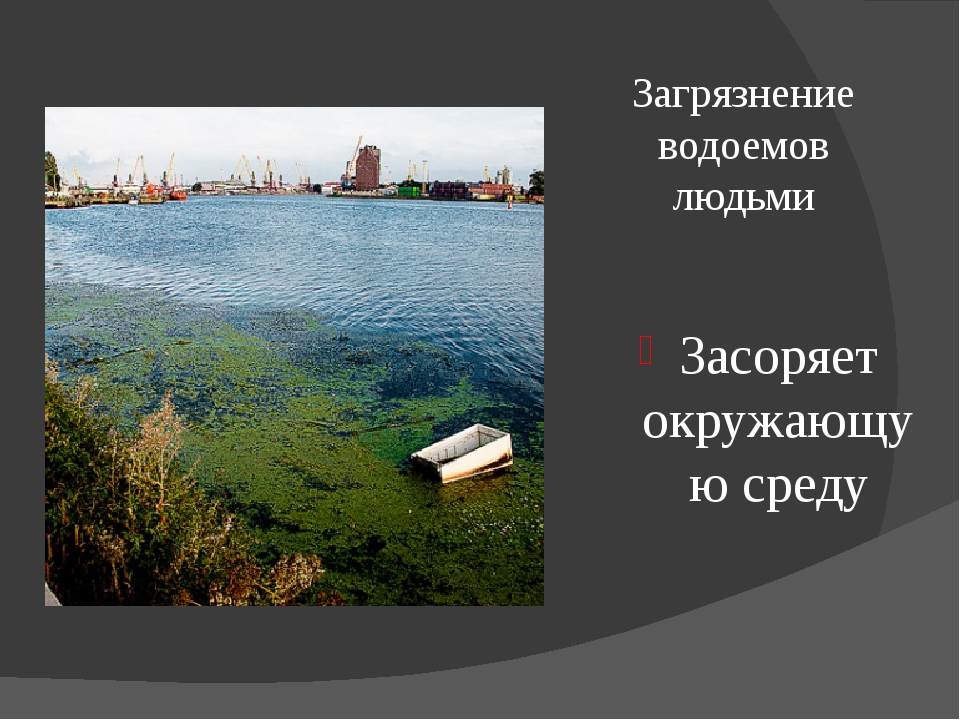 Загрязнение водоемов людьми Засоряет окружающую среду