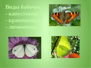 Виды бабочек: - капустница - крапивница - лимонница
