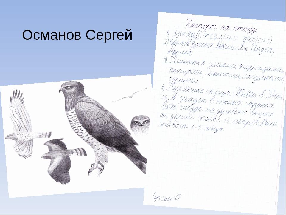 Османов Сергей