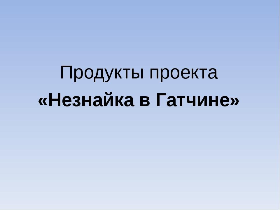 Продукты проекта «Незнайка в Гатчине»