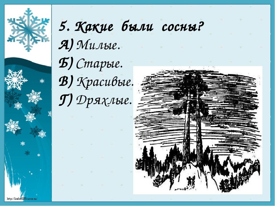 5. Какие были сосны? А) Милые. Б) Старые. В) Красивые. Г) Дряхлые. http://lin...