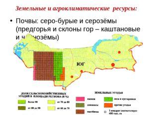 Почвы: серо-бурые и серозёмы (предгорья и склоны гор – каштановые и чернозёмы