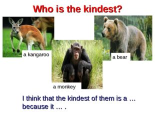 Who is the kindest? a kangaroo a bear a monkey I think that the kindest of th