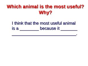 Which animal is the most useful? Why? I think that the most useful animal is