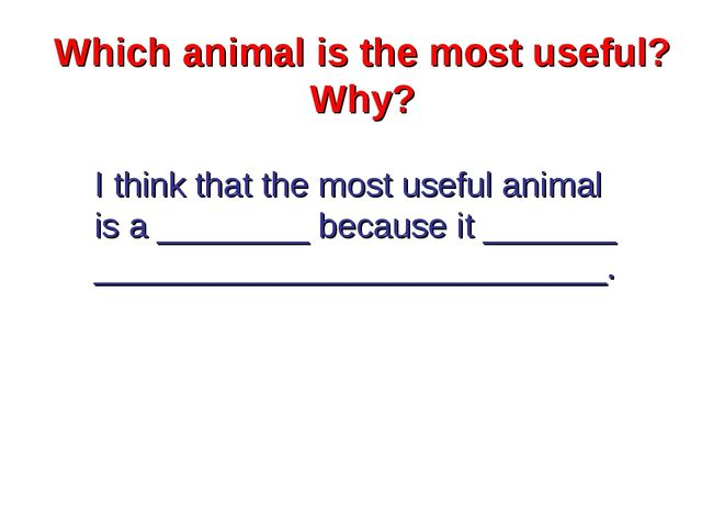 Which animal is the most useful? Why? I think that the most useful animal is...