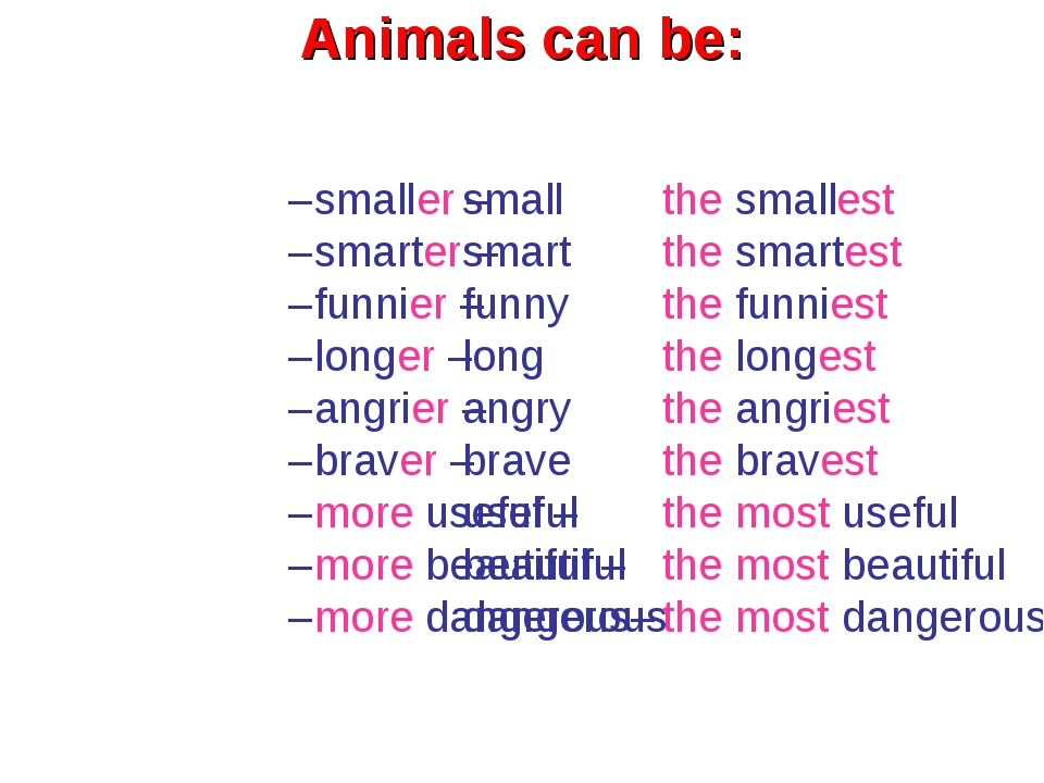 small smart funny long angry brave useful beautiful dangerous Animals can be:...