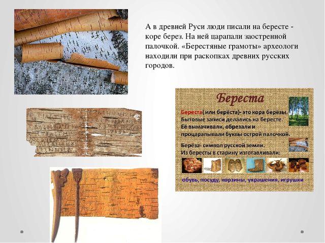 А в древней Руси люди писали на бересте - коре берез. На ней царапали заостре...