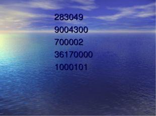 283049 9004300 700002 36170000 1000101