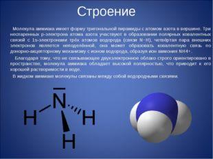 Строение Молекула аммиака имеет форму тригональной пирамиды с атомом азота в