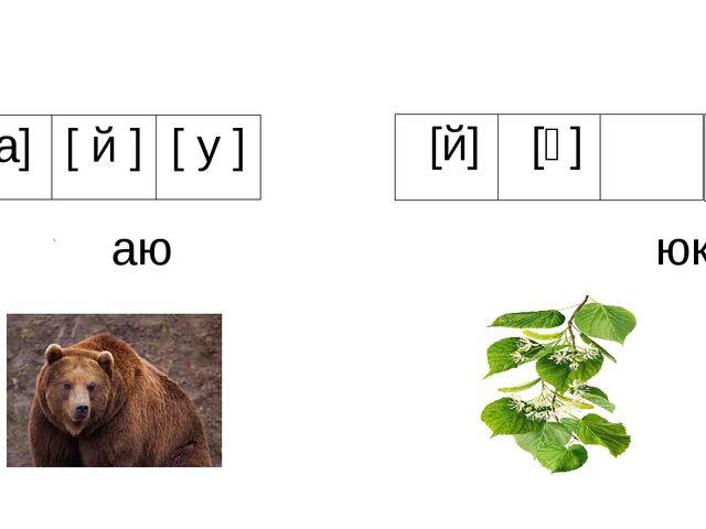 аю юкә [а] [й] [у] [й] [ү] [ә]