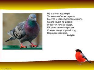 Ну, а это птица мира, Только в небесах парила, Быстро к нам спустилась в ноги