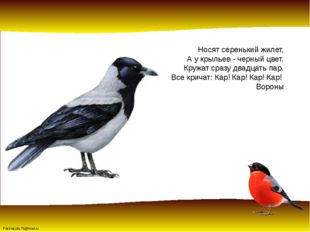 Носят серенькийжилет, А у крыльев - черный цвет. Кружат сразу двадцать пар.